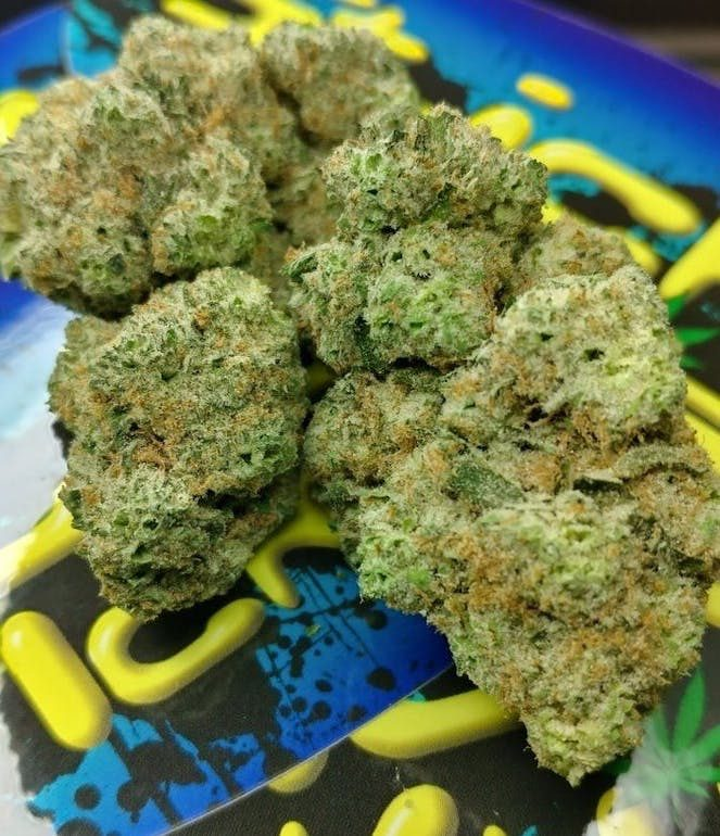 dispensary in colorado hybrid sativa Stardawg